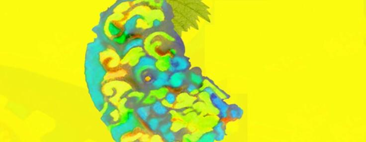 La Ruche des arts fête les couleurs