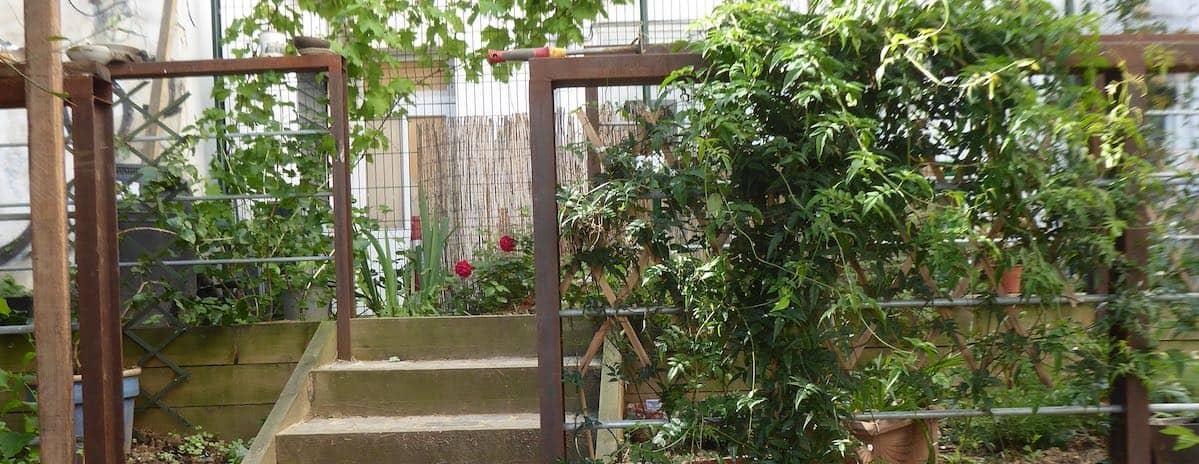 Visite du jardin partagé
