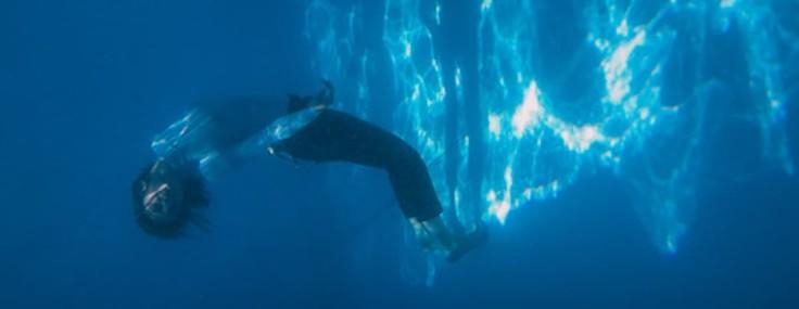 Spectacle Whales de Rebecca Journo